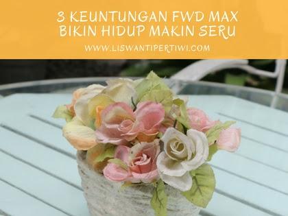 3 Keuntungan FWD MAX Bikin Hidup Makin Seru