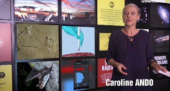 http://www.universcience.tv/video-des-empreintes-de-bipede-de-6-millions-d-annees-15771.html