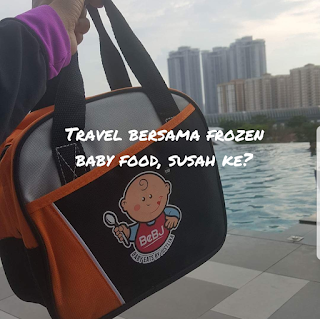 Travel bersama frozen baby food. Susah ke?