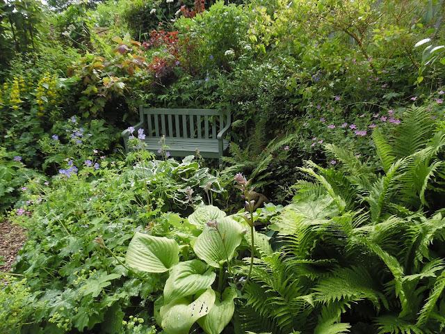 ławka drewniana w ogrodzie