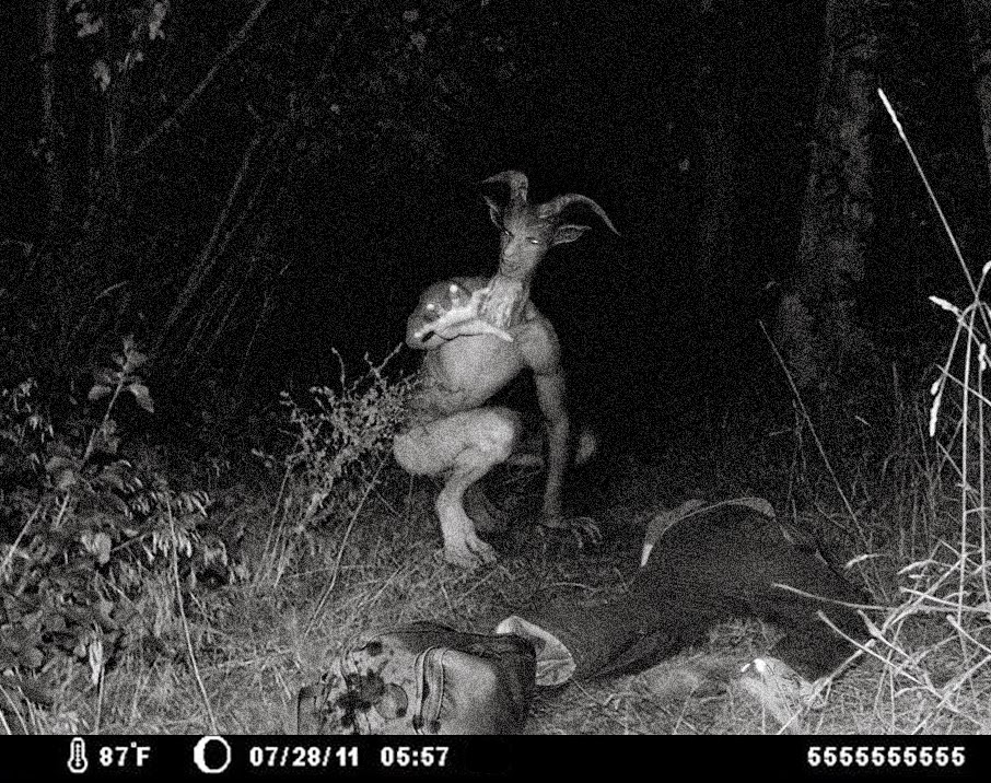 Image result for the goatman of maryland