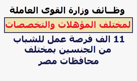"""وظائف وزارة القوى العاملة للشباب من الجنسين """" 11 الف وظيفة """" لمختلف المؤهلات - للتقديم هنا"""