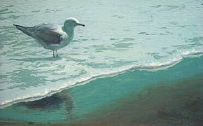 Gull in the Tide