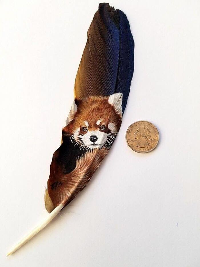 05-Red-Panda-on-macaw-feather-Krystle-Missildine-Painting-Realistic-Animals-on-Delicate-Feathers-www-designstack-co