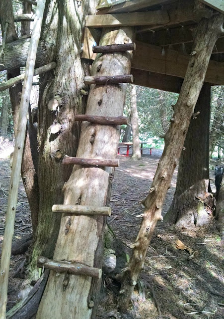 how to build a treehouse ladder with a tree