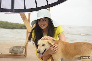 Adah-Sharma-Stills-at-PETA-On-Carter