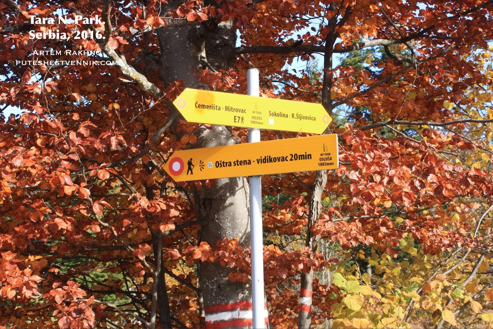 Указатель тропы и осенние листья