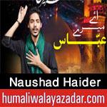 http://www.humaliwalayazadar.com/2017/09/naushad-haider-nohay-2018.html