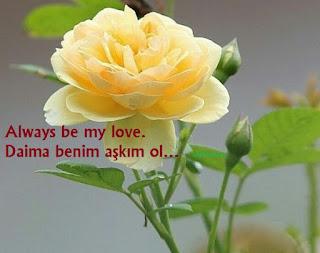 altın sözler ingilizce, aşk sözleri, en güzel aşk sözleri inglizce, ingilizce aşk sözleri, ingilizce etkileyici aşk sözleri, ingilizce türkçe aşk sözleri, sevdiğine aşk sözleri ingilizce,