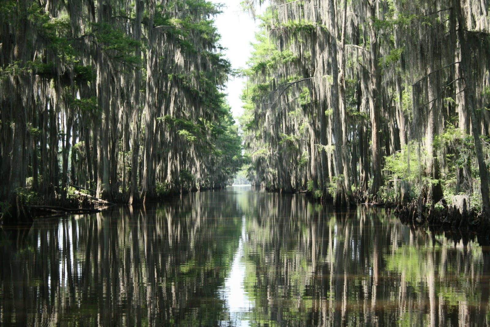 The French Connection Lake Caddo State Park