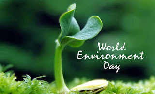 Environment day in Mungpoo