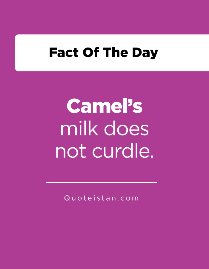Camel's milk does not curdle.