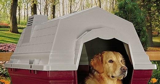 niche pour chien tout pour construire une niche pour chien les niches en plastique