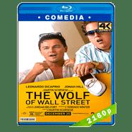 El lobo de Wall Street (2013) HEVC H265 2160p Audio Trial Latino-Ingles-Castellano