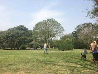 Parque Villa-Lobos- Área de piquenique