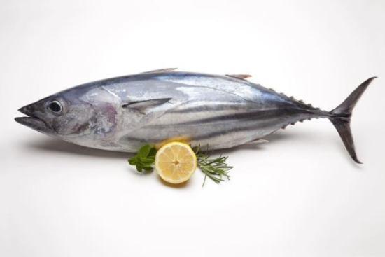 manfaat ikan tuna untuk mengatasi penuaan dini