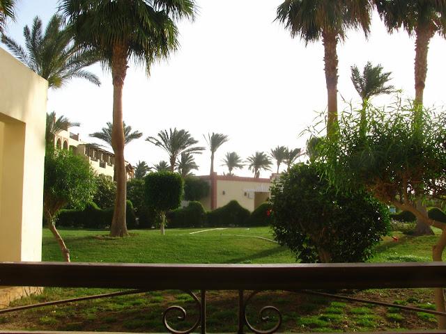 вид из окна отеля в египте