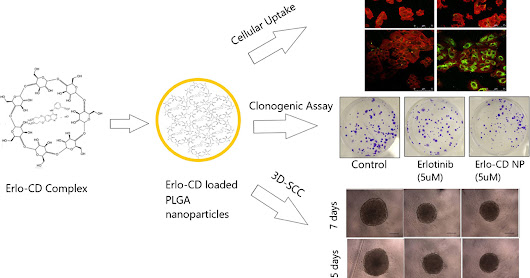PLGA from PolySciTech used in development of nanoparticle therapy against non-small cell lung cancer