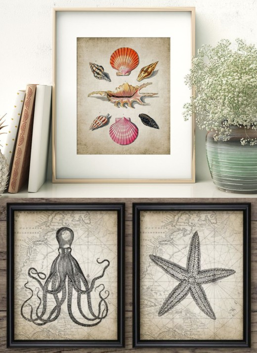 Printable Vintage Marine and Sea Life Graphic Illustration Art