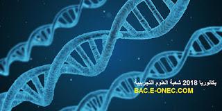 بكالوريا 2018 علوم تجريبية
