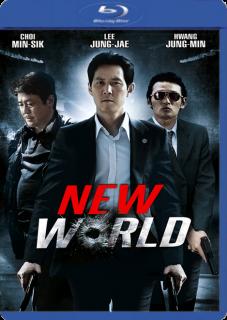 Operación Nuevo Mundo (2013) DVDRip Latino