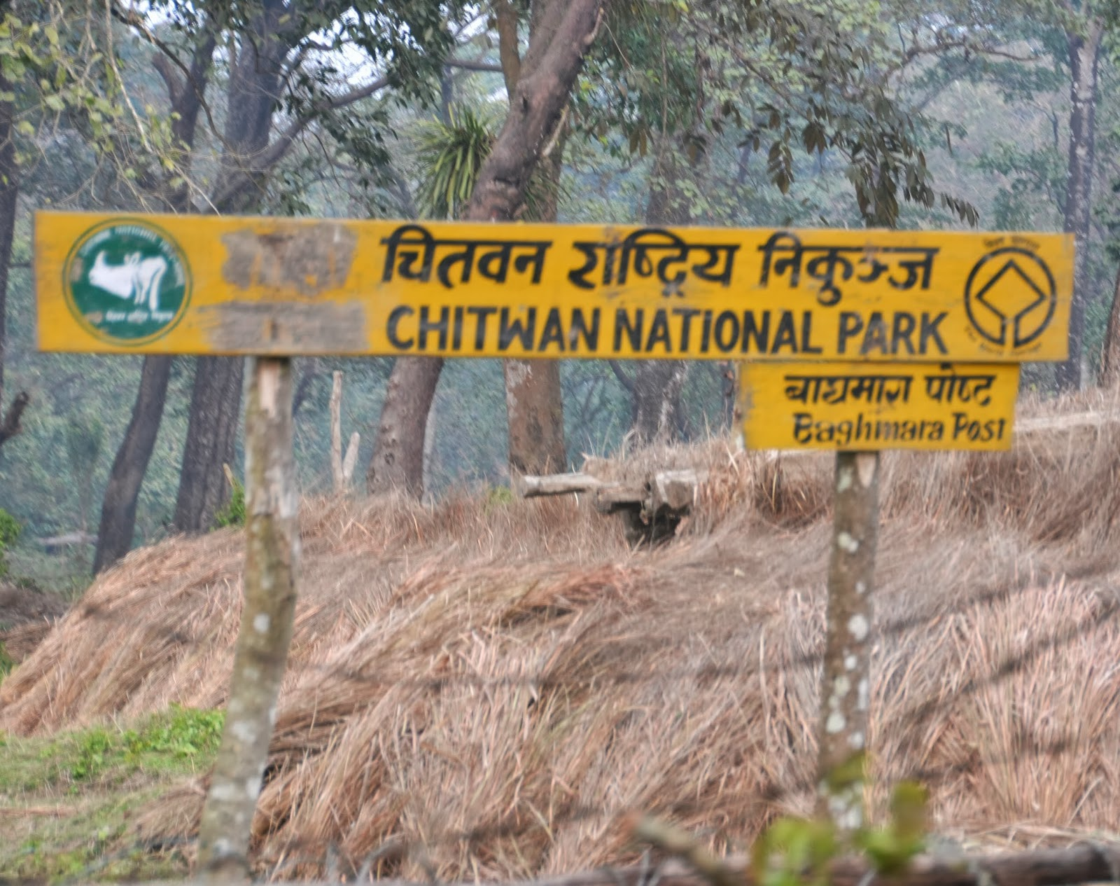 Chitwan National Park and Places to Visit in Chitwan - Saroj