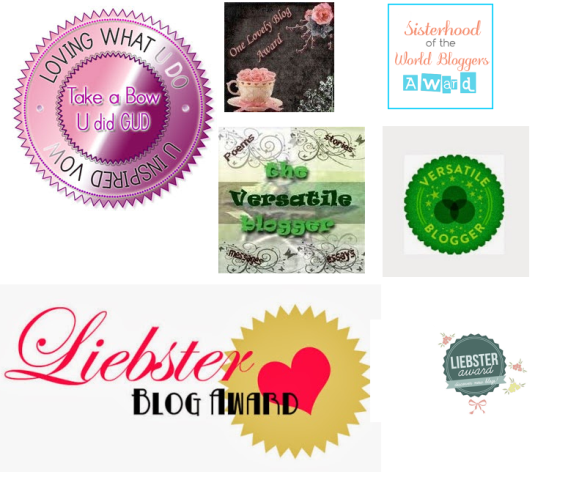 Blog Awards - Acknowledgements From Fellow Bloggers 2009-present