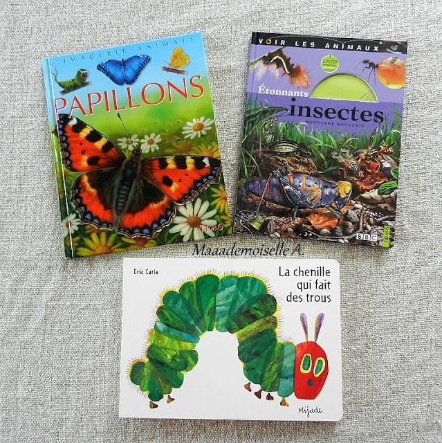 || Nos activités sur les papillons ; Livres Les papillons, Etonnants Insectes, La chenille qui fait des trous