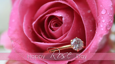 rose day pink rose images