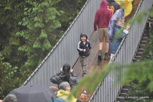 Capilano_Suspension_Bridge_Park_Vancouver_Canada