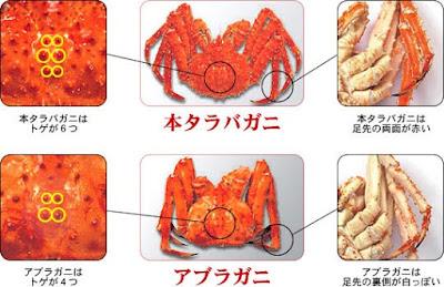 Imagen con la diferencia entre los dos tipos de cangrejo