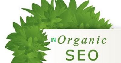 Mengenal istilah SEO inorganik