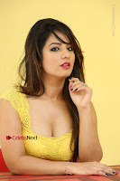 Cute Telugu Actress Shunaya Solanki High Definition Spicy Pos in Yellow Top and Skirt  0542.JPG