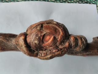 Gembol Kayu Jati