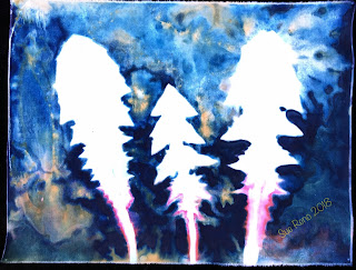 Wet cyanotype_Sue Reno_Image 494