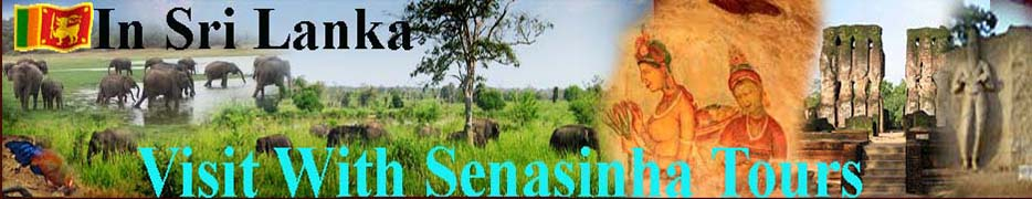 Visit  Sri Lanka  With Senasinghe Tours