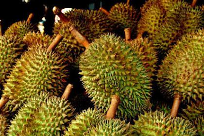 Bolehkah Penderita Diabetes dan Asam Urat Makan Buah Durian?