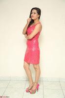 Shipra Gaur in Pink Short Micro Mini Tight Dress ~  Exclusive 100.JPG