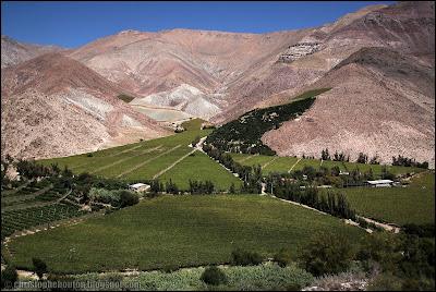 Vallée de Elqui, Elqui, Pisco Elqui, Chili, Chile, vignes, pisco