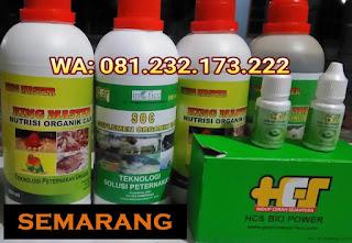 Jual SOC HCS, KINGMASTER, BIOPOWER Siap Kirim Semarang Ungaran
