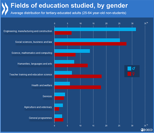 Do men's and women's choices of field of study explain why women earn less than men?