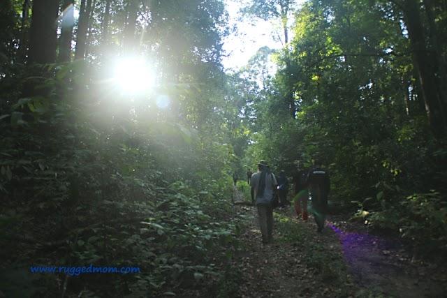 Port Dickson | Bercuti Sambil Belajar Mengenai Alam Di Eco-Edutourism Hutan Simpan Sungai Menyala