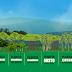 Vale a pena plantar florestas nativas? Conheça 4 formas