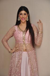 Actress Aditi Singh Latest Stills in Designer Dress at Guppedantha Prema Pressmeet 0022.jpg