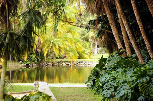 Fairchild Tropical Garden em Miami