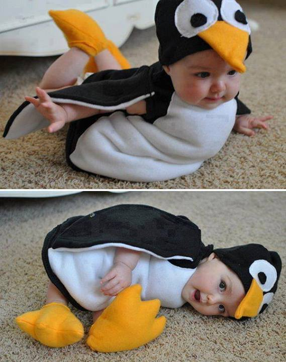 Funny pictures of babies to download cute babies pics wallpapers cute baby penguin funny picture voltagebd Image collections