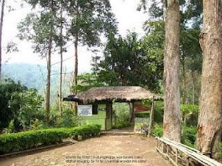 gerbang hutan jayagiri lembang