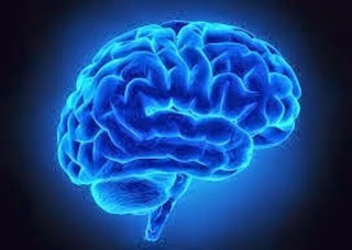 Ninety-five percent (95) of people with normal thinking memory will have normal SAGE scores