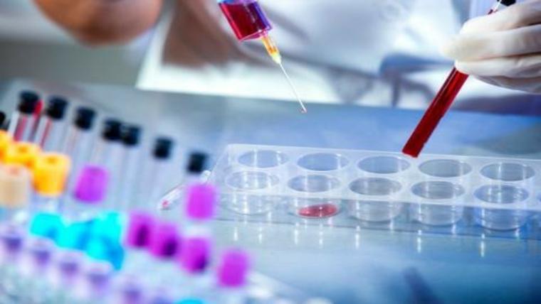 Cursos Grátis de Biomedicina: Introdução ao Diagnóstico de vírus