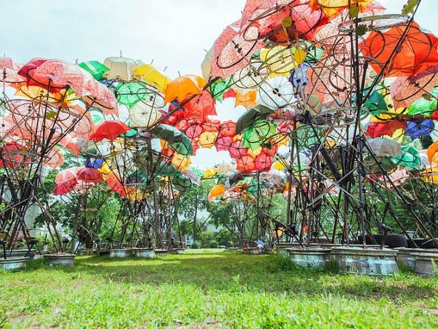 Crecimiento Orgánico: Un pabellón grande desarrollado de paraguas rotos y ruedas de bicicleta